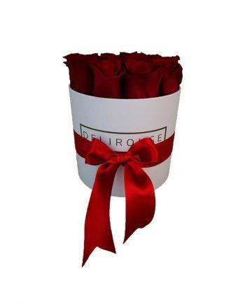 Rosas Eternas Pequeñas en Caja Redonda Pequeña