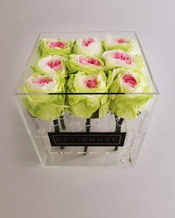 Caja Acrílica Pequeña de Rosas Eternas