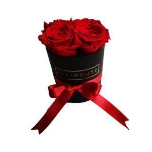 Rosas Eternas Caja Mini de Rosas Eternas 1