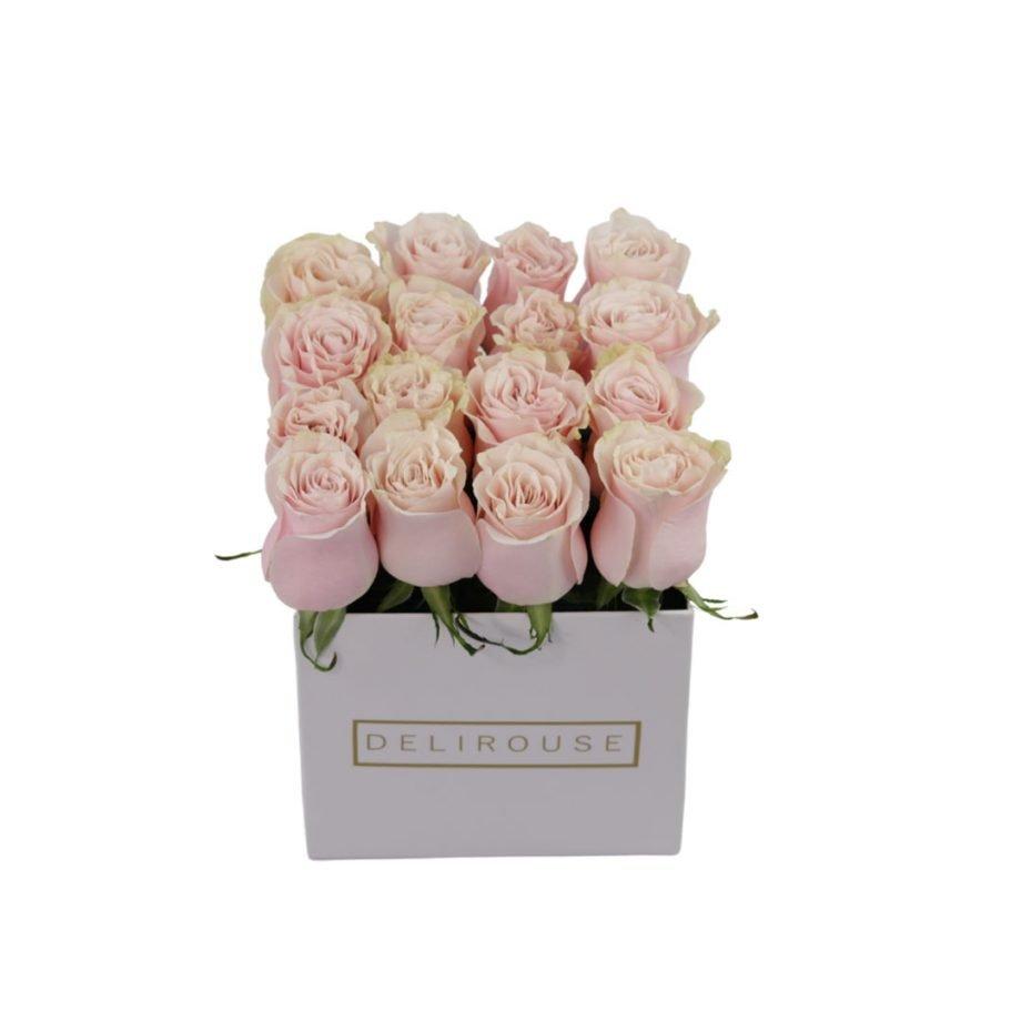 Caja Mediana de Rosas Rosadas 1
